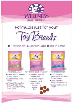 Wellness Natural Pet Food Toy Breed Recipes are tailored to toy breed dog's needs. Learn more: http://weln.es/1jgygD7