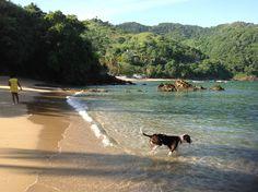 Castara Tobago