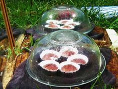 Cupcake Solar Cooker (the set up looks pretty dangerous but summer campers would love this activity)