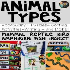 Animals Bundle by Bobbi Bates Social Studies Resources, Science Resources, Science Lessons, Teaching Science, Teacher Resources, Science Ideas, Classroom Resources, Different Types Of Animals, Teaching Strategies