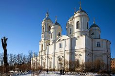 Prince Vladimir Cathedral on the Petrograd Side in St Petersburg, Russia. Antonio Rinaldi