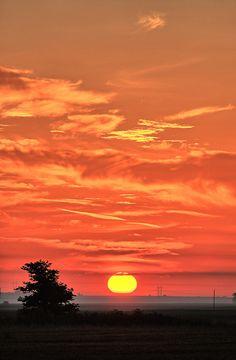 Sunrise at Prairie, Illinois