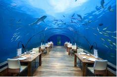 Conrad Maldives Rangali Island - Room Reservations - VIPsAccess.com