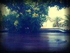 My Balcony View. @Petrou_Palace
