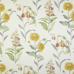 Save on our Acacia Bloomingdale Traditional Fabric. This Regular fabric is perfect for Curtains, Blinds & Upholstery. Curtain Fabric, Curtains, Stuart Graham, Prestigious Textiles, Traditional Fabric, Buy Fabric, Cotton Fabric, Modern Prints, Botanical Prints