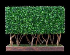 faux #boxwood #hedge