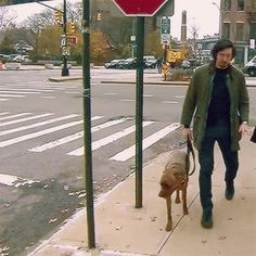 "unapologeticreylotrash: ""arrivedmad: ""adam driver and moose "" This is so pure """