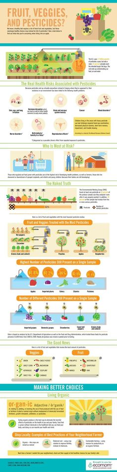 a wonderful organic foods infographic #foodfacts