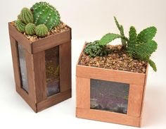 How to Glue Wood to Glass - Simple Cactus Terarriums | iLoveToCreate