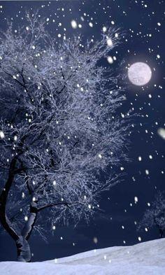 moonlight winter hiking
