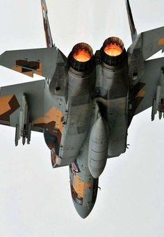 """michell169: """" JASDF F-15DJ Aggressor squadron """""""