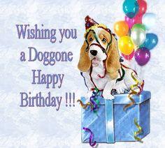 Dog gone birthday Happy Birthday Verses, Send Birthday Card, Happy Birthday Dog, Sons Birthday, Happy Birthday Images, Birthday Messages, Birthday Greetings, It's Your Birthday, Birthday Wishes