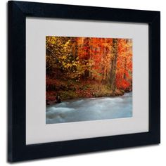 Trademark Fine Art Sometimes Canvas Art by Philippe Sainte-Laudy, Black Frame, Size: 11 x 14, Multicolor