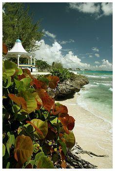 Barbados Coast...one of my favorite islands.