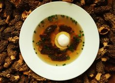 A recipe for morel consomme
