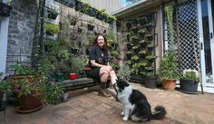 Lush, green and edible: Green walls in Enmore - Green Villages Sydney