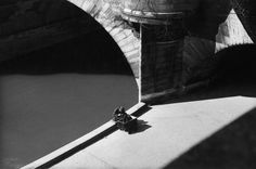 Pont Neuf, Paris, 1949 by Sabine Weiss Photography Essentials, Dslr Photography Tips, City Photography, Creative Photography, Sabine Weiss, Robert Doisneau, Black And White City, French Photographers, Paris