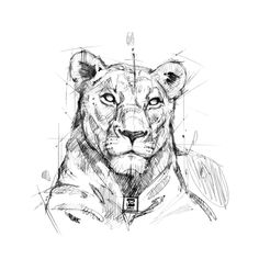 ArtStation - Lion, psdelux ...