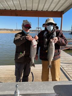 Another good day on the lake today. Lake Texoma, Fishing Trips, Good Day, Buen Dia, Good Morning, Hapy Day