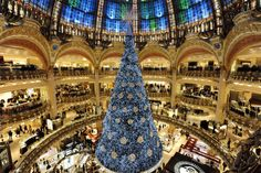 Most beautiful Christmas trees around the world | BRABBU  Most beautiful Christmas trees around the world, most beautiful Christmas trees, around the world, celebrate Christmas, Christmas traditions, Lifestyle, BRABBU
