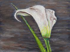 "Картина - ""Цветок Калла""   Размер (см.): 18x24   Масло, картон"