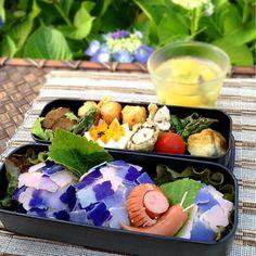庭の紫陽花も咲きはじめました。 梅雨は嫌いだけど、紫陽花が咲くので、この時期は楽しみです。 紫陽花は茄子紺でハムを染めました。ピンクの紫陽花も良いんだけど、私は青紫の花が一番好きです ・紫陽花おにぎり ・ウィンナーかたつむり ・茹で卵 ・鶏梅シソ巻揚げ ・ハッシュドポテト ・トマト ・アスパラソテー ・キウイゼリー - 143件のもぐもぐ - 6/4 紫陽花おにぎり弁当(コメ編集出来ないので天然色素使用です) by mikamimoza