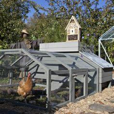 DIY Chicken coop with PDF