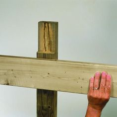 Arbor Notch Beams.  Easier way of attaching beams on the grape arbor.  Sturdy and not complicated to do.