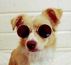 Black Fashion Retro Sunglasses Eyewear - Fashion&Sunglasses Round Aviator Handmade Mens Womens Sunglasses Goggles