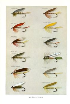 fly fishing, wet flies
