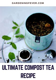 Discover and learn everything your plants will need to thrive and grow with our Ultimate Compost tea recipe. This recipe is by no means complicated and will Season Fruits And Vegetables, Growing Vegetables Indoors, Growing Plants, Regrow Vegetables, Gardening For Beginners, Gardening Tips, Flower Gardening, Succulent Fertilizer, How To Make Compost