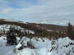 Na vrcholcích Šumavy