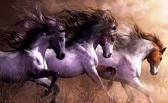 Awesome Horses !!