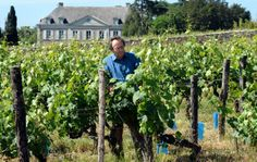 """This is an interesting description of Savennières wine. Do you enjoy wine that you have to """"think about"""", or do you prefer wine that's more accessible?"""