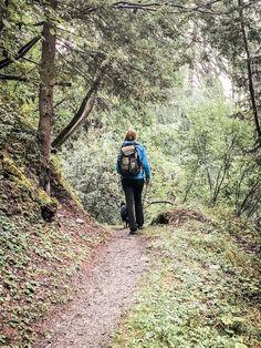 Alpe-Adria-Trail Trail, Dog Food, Hiking