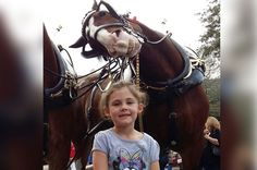 Elise Frew, 5, is photobombed by a laughing horse called Sparky while on holiday in Florida, USA