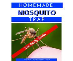 Homemade Mosquito Trap - Not only do mosquitoes suck our blood but they also can carry diseases like the Zika virus. Try this homemade trap! Mosquito Trap Homemade, Best Mosquito Trap, Mosquito Yard Spray, Diy Mosquito Repellent, Plant Bugs, Organic Gardening Tips, Organic Farming, Dawn Dish Soap, Humming Bird Feeders