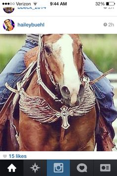 That tack though.