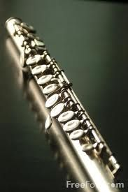 The flute- I used to play; would like to pick it up again.
