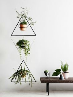 Capra Designs: Plant hangers and pots on The Life Creative