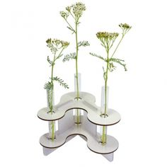 Nicht nur für Eisblumen - Die Vasili-Vase im winterlichen weiß. Nun zum reduzierten Preis im Werkhaus-Shop.