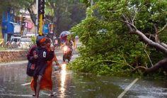 Vardah (Varda) wikki Effect on people of Chennai,Tamil Nadu Chennai, Coast, News, Seaside