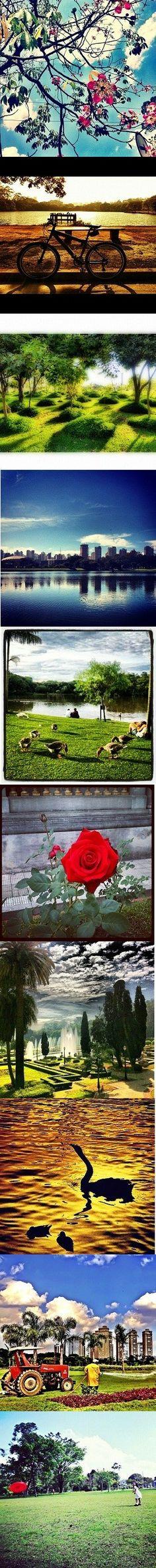 """""""Parques: onde há verde, a vida pulsa""""    Vote na sua foto preferida! Elas foram enviadas por leitores via Instagram. As 4 melhores saem na próxima VEJINHA http://abr.io/2E7A"""