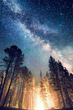 Yıldızlar ve Samanyolu - Breathtaking Photos of Starry Night Skies Wallpaper Sky, Nature Wallpaper, Wallpaper Backgrounds, Ultra Hd 4k Wallpaper, Forest Wallpaper Iphone, Starry Night Wallpaper, Mountain Wallpaper, Wallpaper Gallery, Scenery Wallpaper