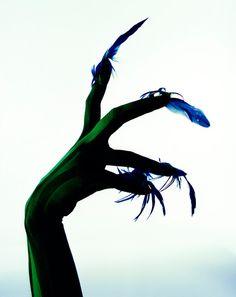 Satoshi Saikusa - Feather Claws