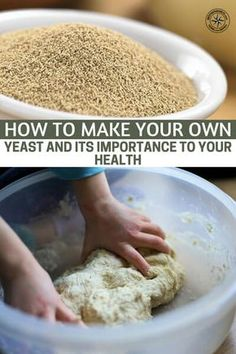 How To Make Your Own Yeast and Its Importance To Your Health - This article will teach you how to make your own yeast. Not only is that a great tool for bread but yeast is also essential in making alcohol. Homemade Bread Without Yeast, No Yeast Bread, Bread Baking, Homemade Breads, Brewers Yeast Bread Recipe, Baking Tips, How To Make Bread, Food To Make, High Energy Foods
