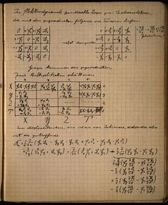 Einstein's notes for lecture on Relativity