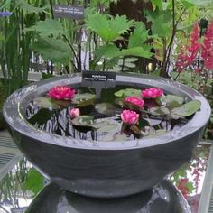 Large Water Features, Water Features In The Garden, Garden Features, Container Pond, Container Water Gardens, Container Gardening, Landscaping Supplies, Pool Landscaping, Patio Pond