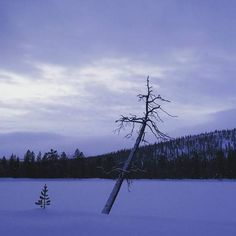 😁 First day skiing this winter 😊❄⛄ Wind Turbine, Skiing, Snow, Photo And Video, Country, Winter, Instagram, National Forest, Ski
