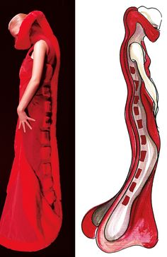 """When Science meets Fashion....""""Red fake fur neurulation dress and illustration courtesy of Helen Storey"""""""